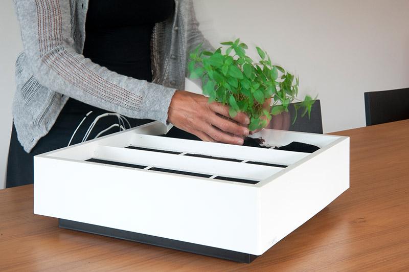 wandbegruenung vertikale begruenung design gute idee test karoo 16 wandbegr nung wandbegr nung. Black Bedroom Furniture Sets. Home Design Ideas